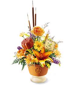 This fall bouquet arrives in a keepsake orange ceramic planter that is decorated with an embossed pumpkin. The arrangement features an orange lily surrounded by orange carnations, butterscotch daisy pompons, and more. Perfect for any Halloween celebration.
