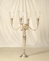 Reggina, it is the Queen of the Candelabras in Miami
