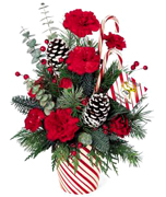 Miami Christmas: Candy canes, red carnations, seasonal greenery and snow-tipped pinecones all come together to create an arrangement thats brimming with Christmas spirit. ORDER NOW