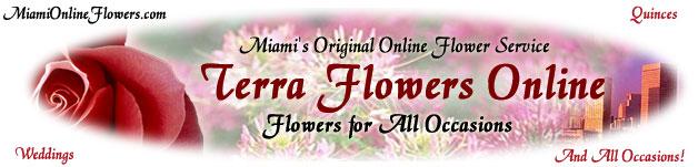Florist flowers, roses, vip arrangements, tropical flowers by Terra Flowers of Miami, the perfect way to enjoy a Great Floral Designs for all occasions in Miami... Natural wedding bouquets, Miami wedding centerpieces, professional wedding setup, customer services and floral design delivery services in Miami...