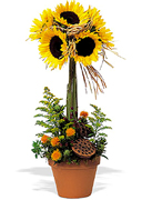 Miami flowers, roses and arrangements fall for THANKSGIVING a perfect gift for yhis family season... Enjoy Miami Thanksgiving with our premier flowers, roses, fillers and exclusive fall design arrangements... Terraflowers offers the very best arrangements to enjoy THANKSGIVING with our family...
