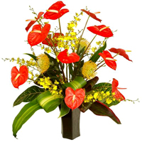 Very big tropical arrangement... Terraflowers will use all the best we have to create a perfect tropical arrangement... GREAT AND UNIQUE TROPICAL FLOWERS - FREE DELIVERY FOR ORDERS ONLINE JUST FOR MOTHER'S DAY!!!!!!! ENJOY IT - ORDER NOW !!!!
