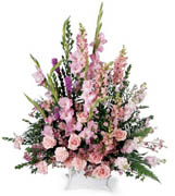 Peaceful Memories arrangement - A beautiful sympathy arrangement featuring flowers in many shades of pink. The handled basket holds pink gladiolus, pink roses, pink snapdragons, pink carnations and more. Appropriate to send to a home or to a funeral. Approx. 39H x 29W