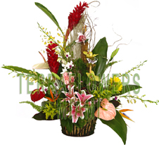 EXCLUSIVE Miami TROPICAL arrangement with EXOTICS and unique flowers, bird of paradise, blue orchids, ginger, anturios, callas,... only VIP tropical and exotic flowers for your VIP SPECIAL OCCASION... customized design, flowers and rustic base used for this unique Piece of Art... HIGH SIZE... ORDER THIS Tropical Designs...